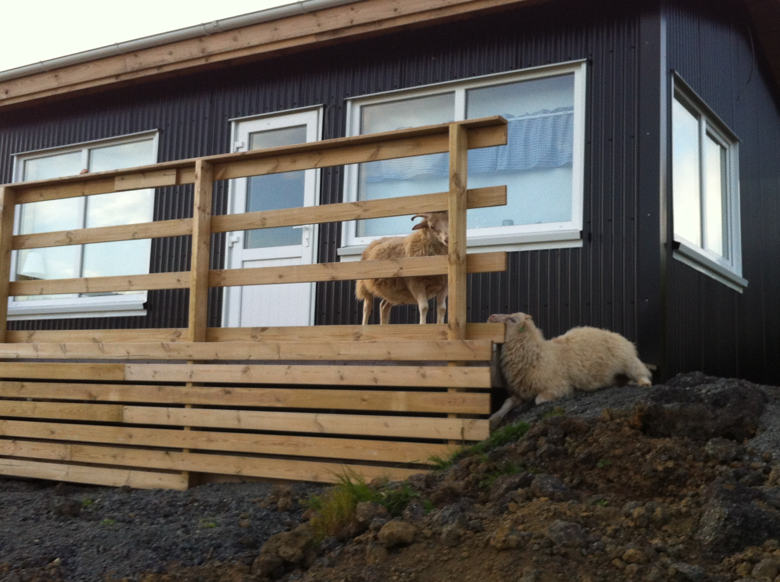 imagen 2 islandia llegada